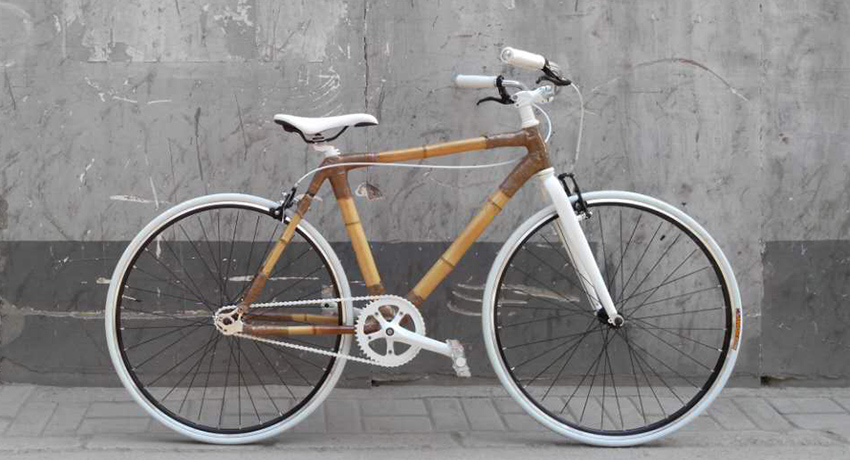 WSU Community Members to Build Bikes out of Bamboo over Break