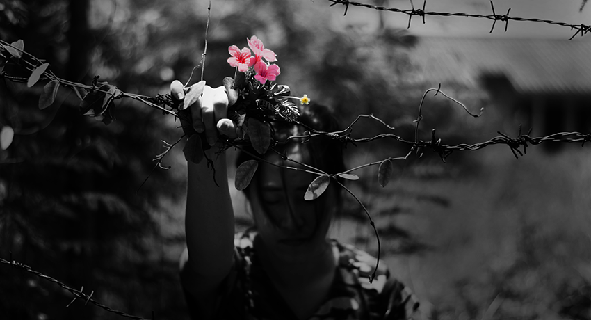 image of a refugee holding flower and barbed wire