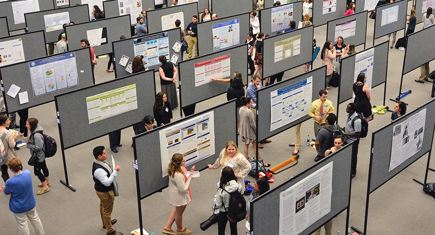 2017 Celebration Scholarship Creativity poster session
