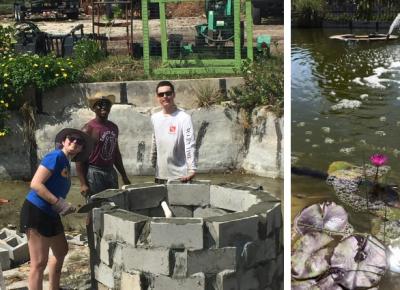 Grimal Grove pond restoration